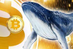 2019年、クジラによるビットコイン(BTC)OTC取引で価格高騰