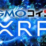 2019年高騰期待仮想通貨にリップル(XRP)が選ばれる!新規投資家依然として増加傾向!GMOコイン調査結果